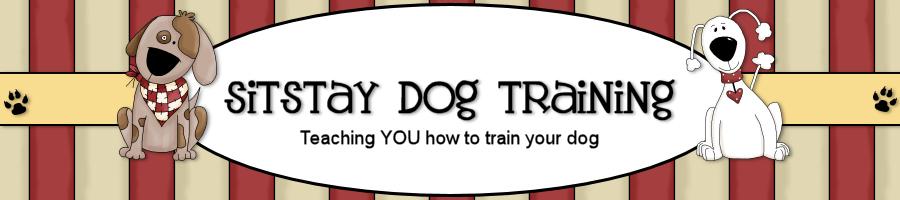 sitstaydog.com